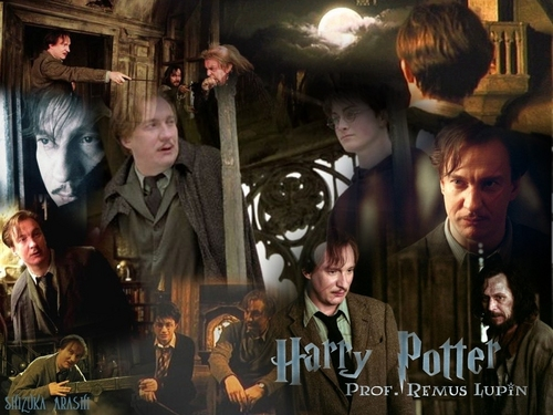 Harry Potter images Harry Potter Wallpapers HD wallpaper and background photos