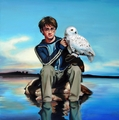 Harry with Hedwig
