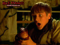 horror-movies - Idle Hands wallpaper