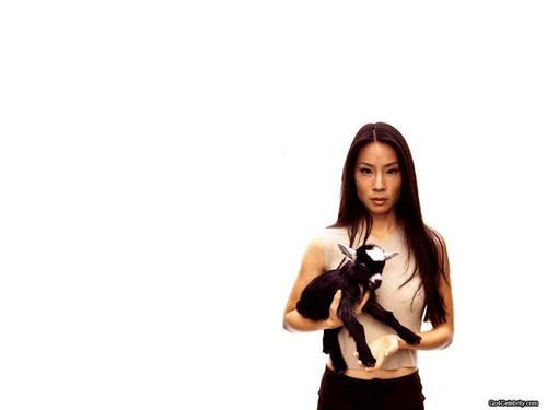 lucy liu wallpaper possibly with a hip boot, attractiveness, and a portrait titled Lucy Liu