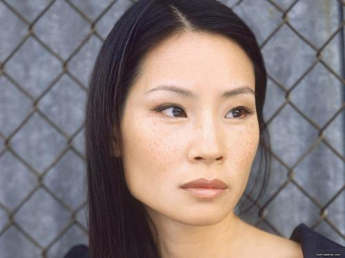 Lucy Liu wallpaper containing a chainlink fence titled Lucy Liu