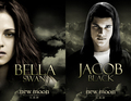 New Moon Bella and Jacob - twilight-series photo