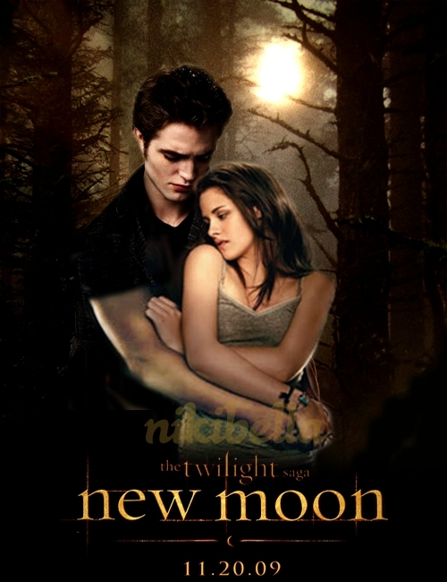 http://images2.fanpop.com/images/photos/6800000/New-Moon-poster-twilight-series-6888564-500-650.jpg