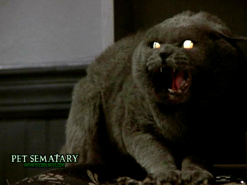 Pet Semetary wallpaper