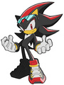 Riders Shadow - shadow-the-hedgehog photo