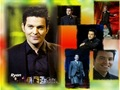 Ryan - celtic-thunder wallpaper