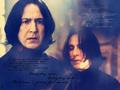 Severus Snape zl