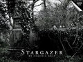 Stargazer Wallpaper - evernight wallpaper