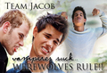 Team Jacob - twilight-series photo