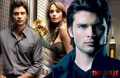 Tom welling & Erica Durance Wallpaper