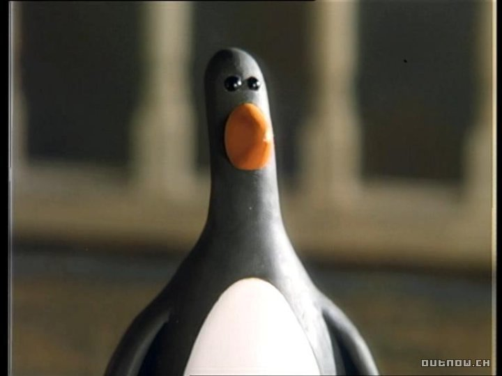 Evil penguin wallace and gromit - photo#9