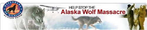 Help Save The Wolves ! Banner