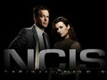 ncis - Ziva and Tony wallpaper