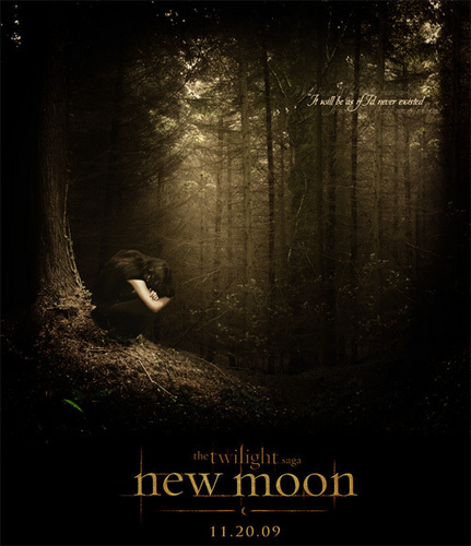 a new moon poster