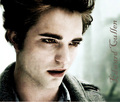 ed_cullen - twilight-series photo