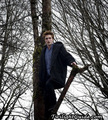 edward on a tree - twilight-series photo