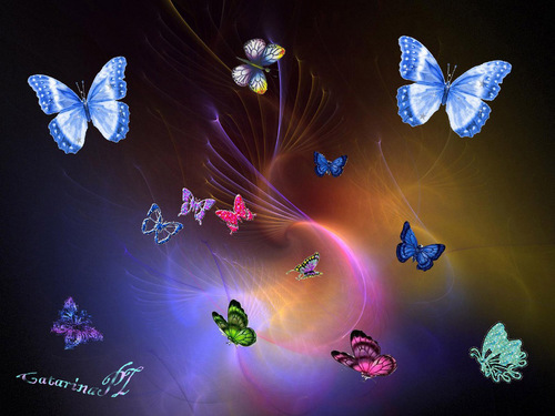 Butterflies wallpaper entitled flies