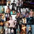 hunks of twilight - twilight-series photo