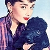 http://images2.fanpop.com/images/photos/6900000/-Audrey-Hepburn-audrey-hepburn-6920117-100-100.jpg