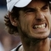 Andy - andy-murray icon