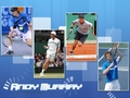 Andy wallpaper <3 - andy-murray wallpaper