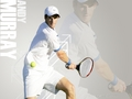Andy wallpapers <3 - andy-murray wallpaper