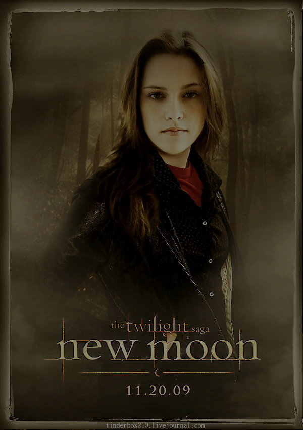 http://images2.fanpop.com/images/photos/6900000/Bella-New-Moon-twilight-series-6958140-600-850.jpg