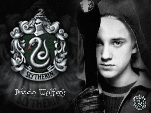 Draco Malfoy wallpaper entitled Draco Malfoy