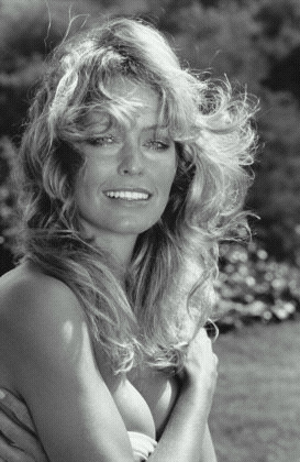 farrah fawcett hair lyrics