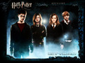 H&G - R&H - couples-from-harry-potter wallpaper