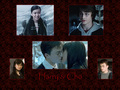 Harry and Cho - couples-from-harry-potter photo