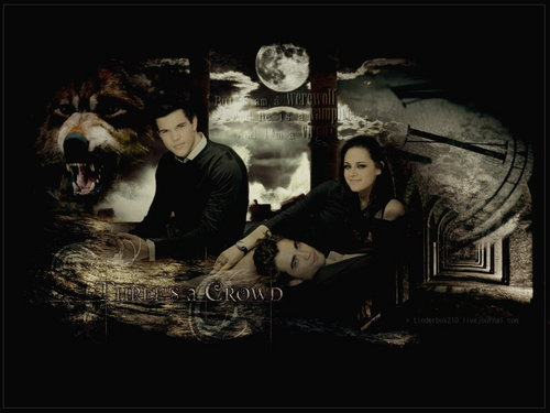 Jacob,Bella & Edward-New Moon
