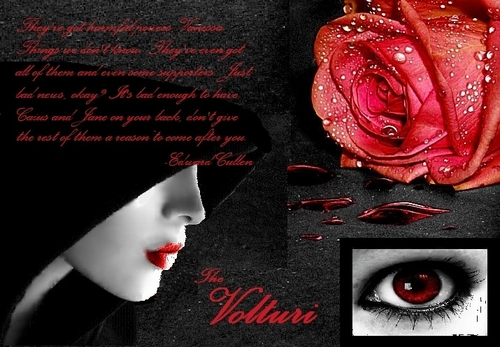 The Volturi wallpaper possibly with a red cabbage and a sign called Jane