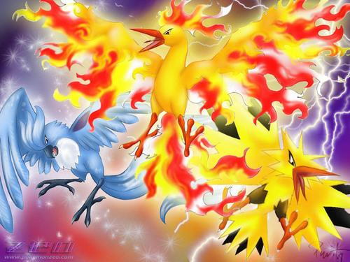 Legendary birds - legendary-pokemon Wallpaper
