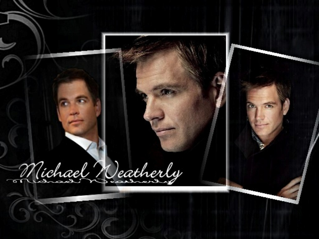 Michael Weatherly - Michael Weatherly/ Cote de Pablo 1024x768 800x600