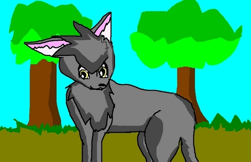 fanpop's got talent wallpaper with anime titled My entry for FGT2009- A warrior cat I drew!