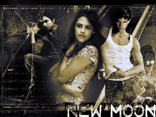 New Moon love triangle