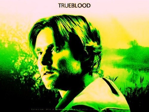 True Blood wallpaper possibly containing a portrait entitled Sam