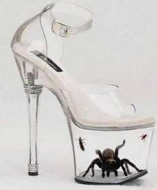 Tarantula shoes - womens-shoes photo