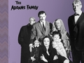 The Addams Family (2a) - addams-family wallpaper