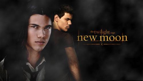 Twilight Saga Banners