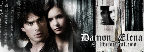 damon and elena @ livejournal