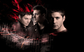 jensen red wallli 3 - jensen-ackles wallpaper