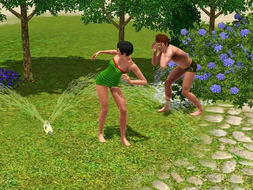 sims 3 - Steel family