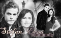 stefan and elena community