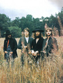  the beatles- last photo shoot  - the-beatles photo