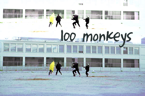 http://images2.fanpop.com/images/photos/7000000/100-Monkeys-100-monkeys-7009673-500-333.jpg