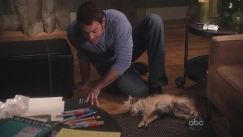 2.11 - The Dog - samantha-who Screencap