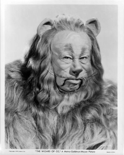 A Rare photo Of The Cowardly Lion