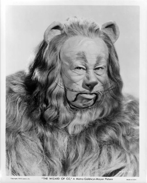 A Rare foto Of The Cowardly Lion